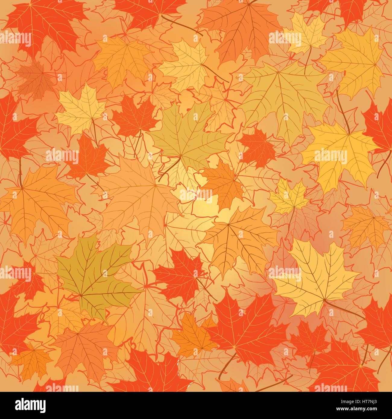 - Fall Leaf Nature Autumn Leaves Background Season Floral Pattern