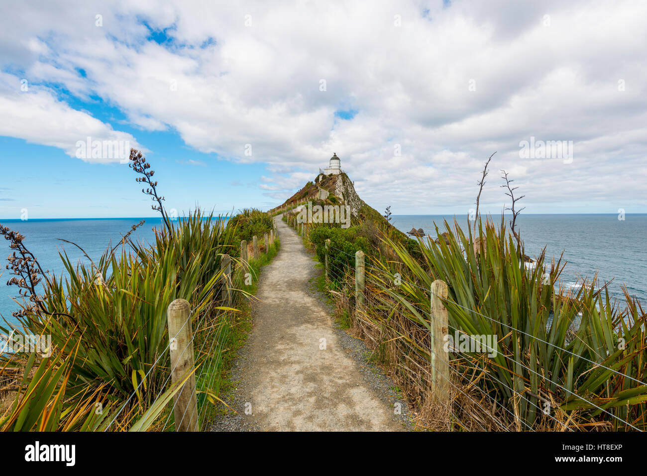 Lighthouse at Nugget Point, Catlins, Southland, New Zealand - Stock Image