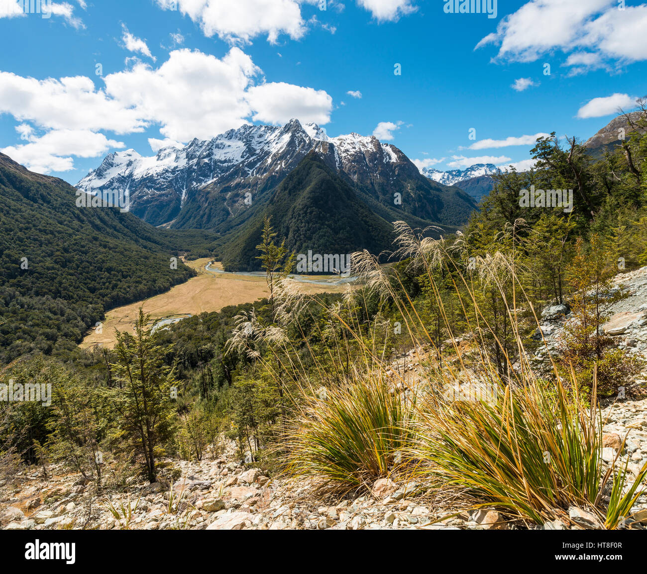 View on the Routeburn Flats, Routeburn Track, behind Humboldt Mountains, Westland District, West Coast, Southland, - Stock Image