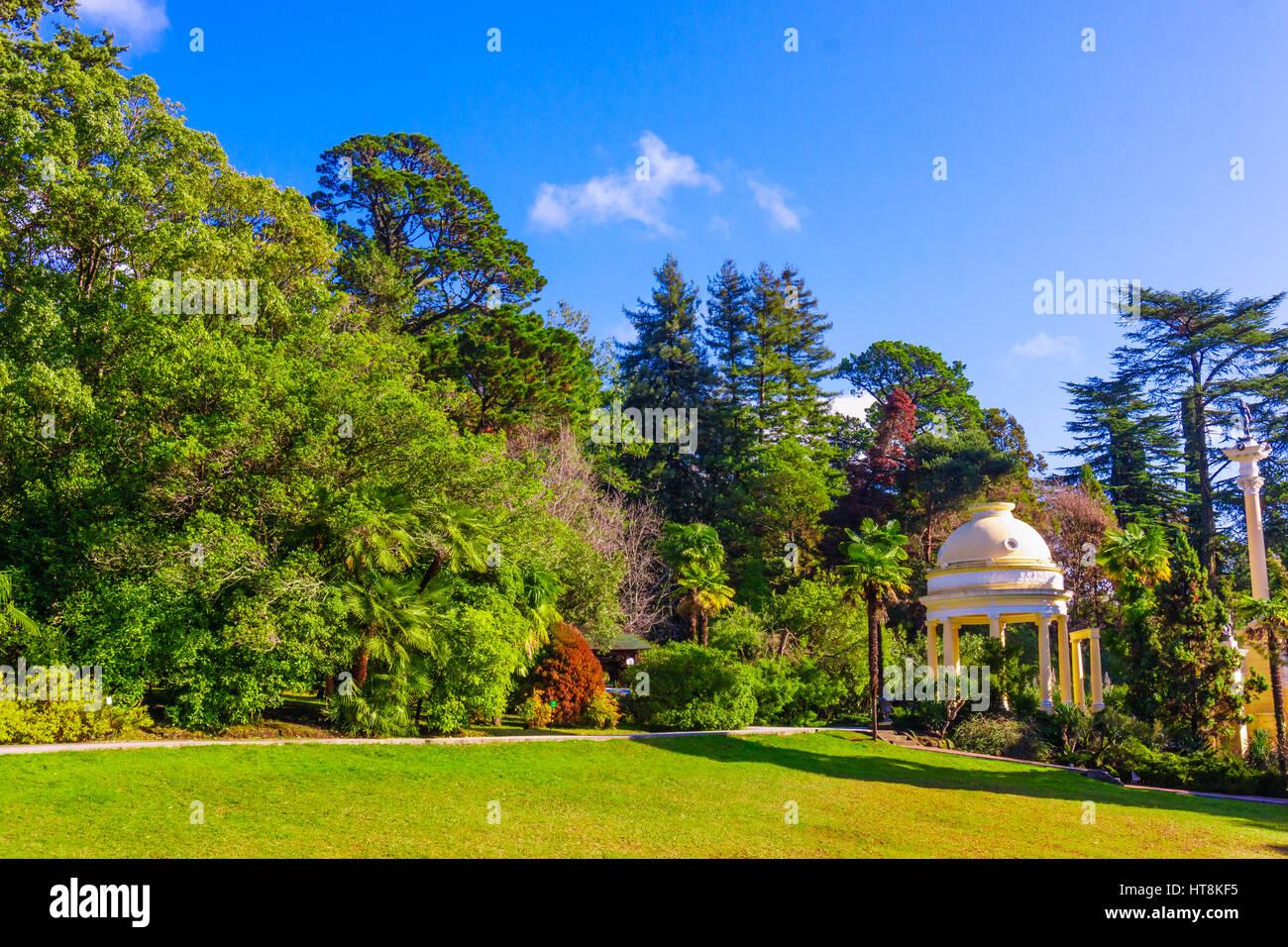 Sochi Arboretum is a museum of nature 73