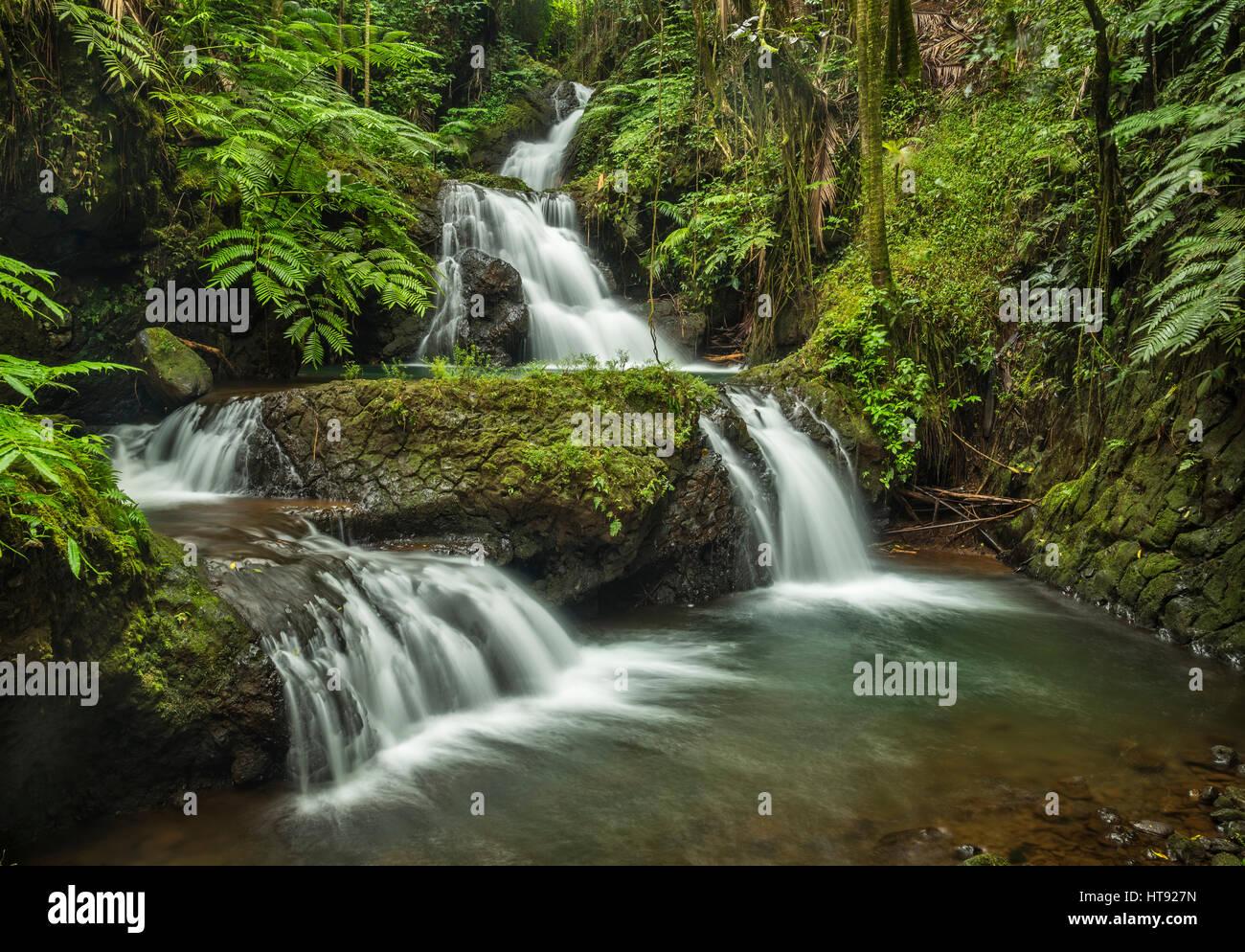 Waterfalls on Onomea Stream in Hawaii Tropical Botanical Garden near Hilo on the Big Island of Hawaii. - Stock Image