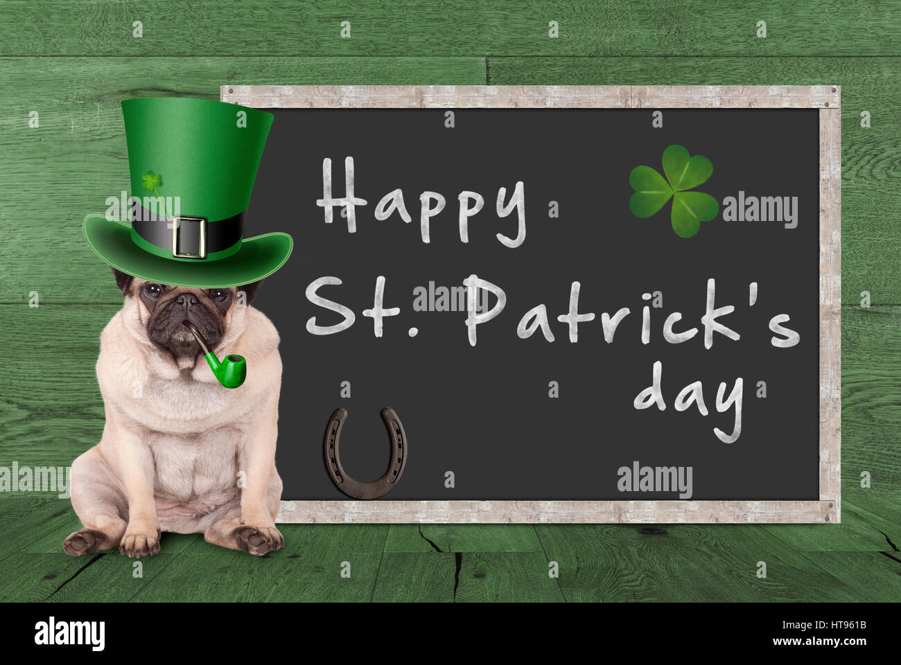 67eb99a70 cute pug puppy dog with leprechaun hat for st. patrick's day smoking ...