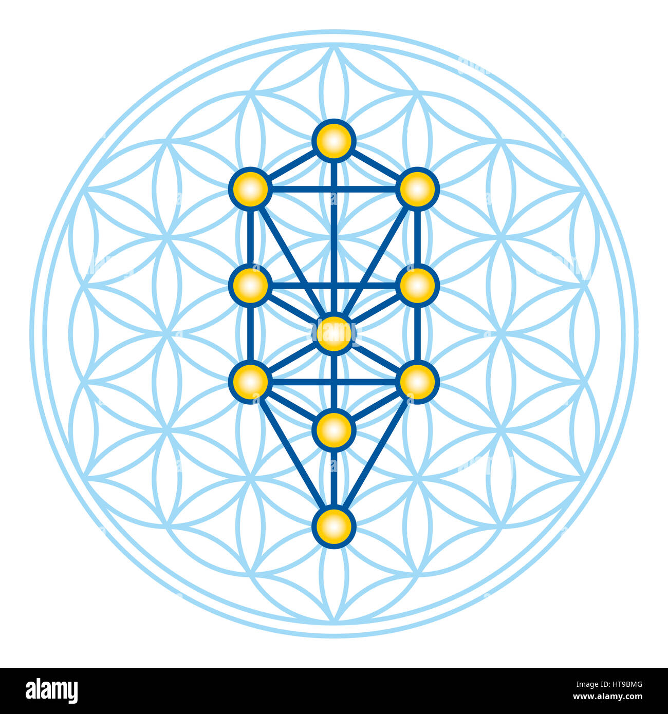 Flower of Life in Tree of Life. Sephirots of Kabbalah in ancient symmetrical symbol, composed of multiple overlapping - Stock Image