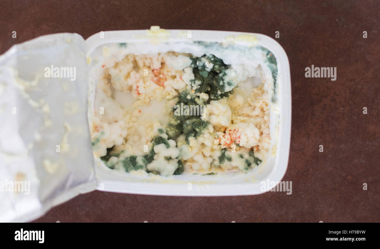 Close up on rotten butter or cottage cheese - Stock Image