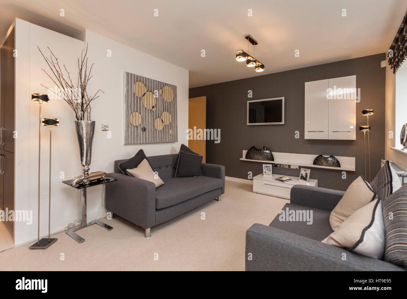 Home Interior Modern Lounge New Build Grey Sofa Cream Carpet Stock Photo Alamy