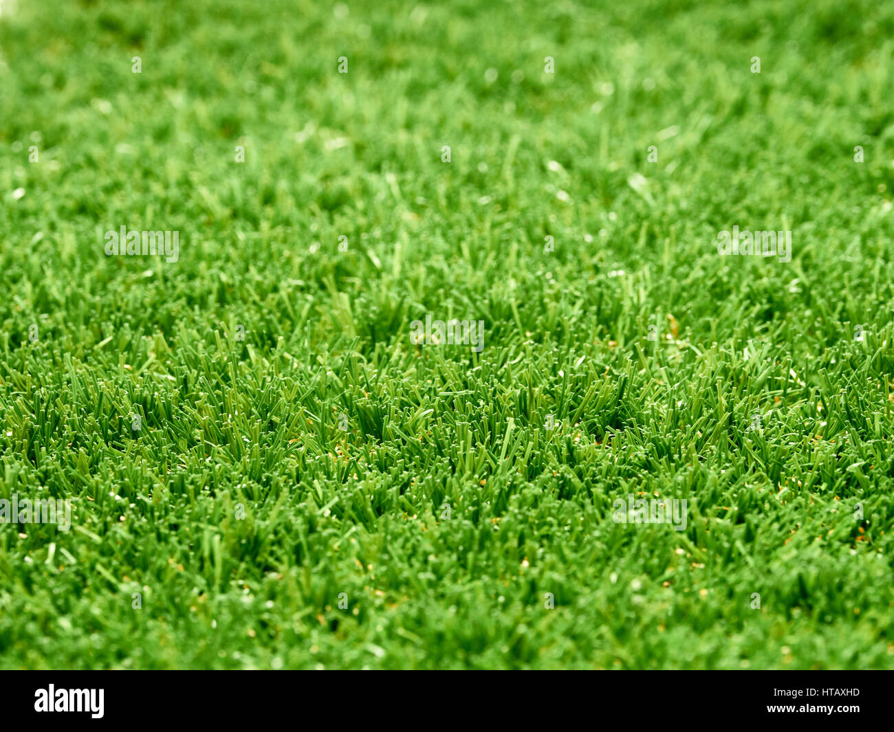45 degree angled view of green astro turf grass, abstract lawn. - Stock Image