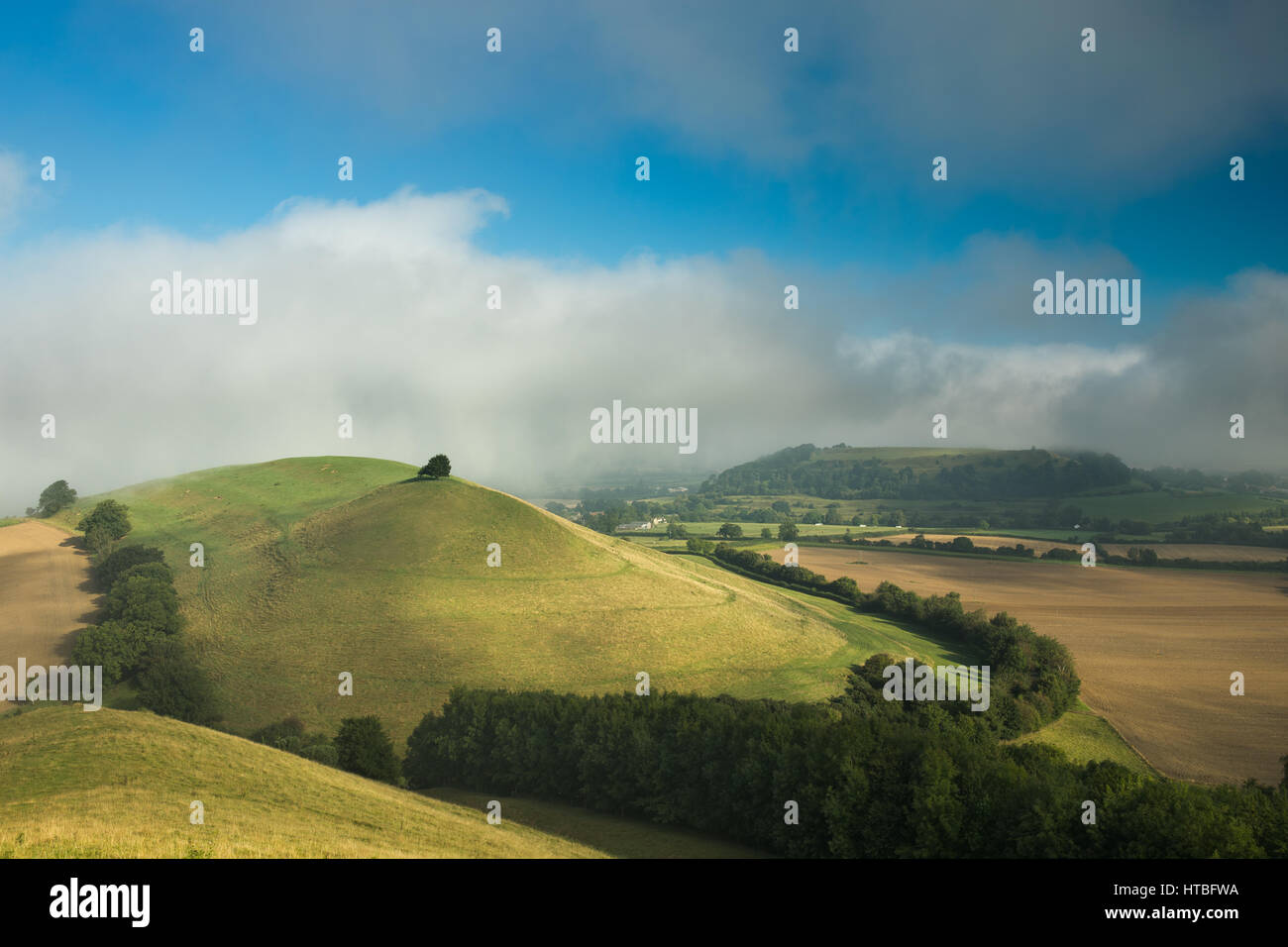A misty morning on Corton Denham Beacon looking towards Cadbury Castle, Somerset, England, UK - Stock Image