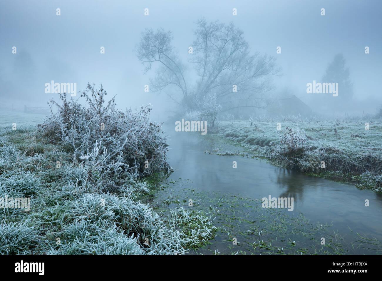 A misty, frosty morning on the banks of the Gascoigne, Kingsbury, Milborne Port, Somerset, England, UK Stock Photo