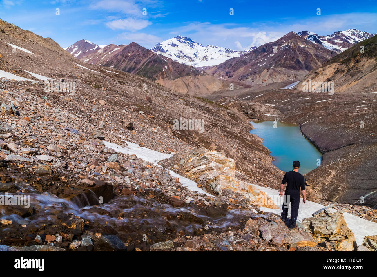 A hiker gazes over the 'intersection' of three branches of Castner Glacier at Mount Silvertip rising in - Stock Image