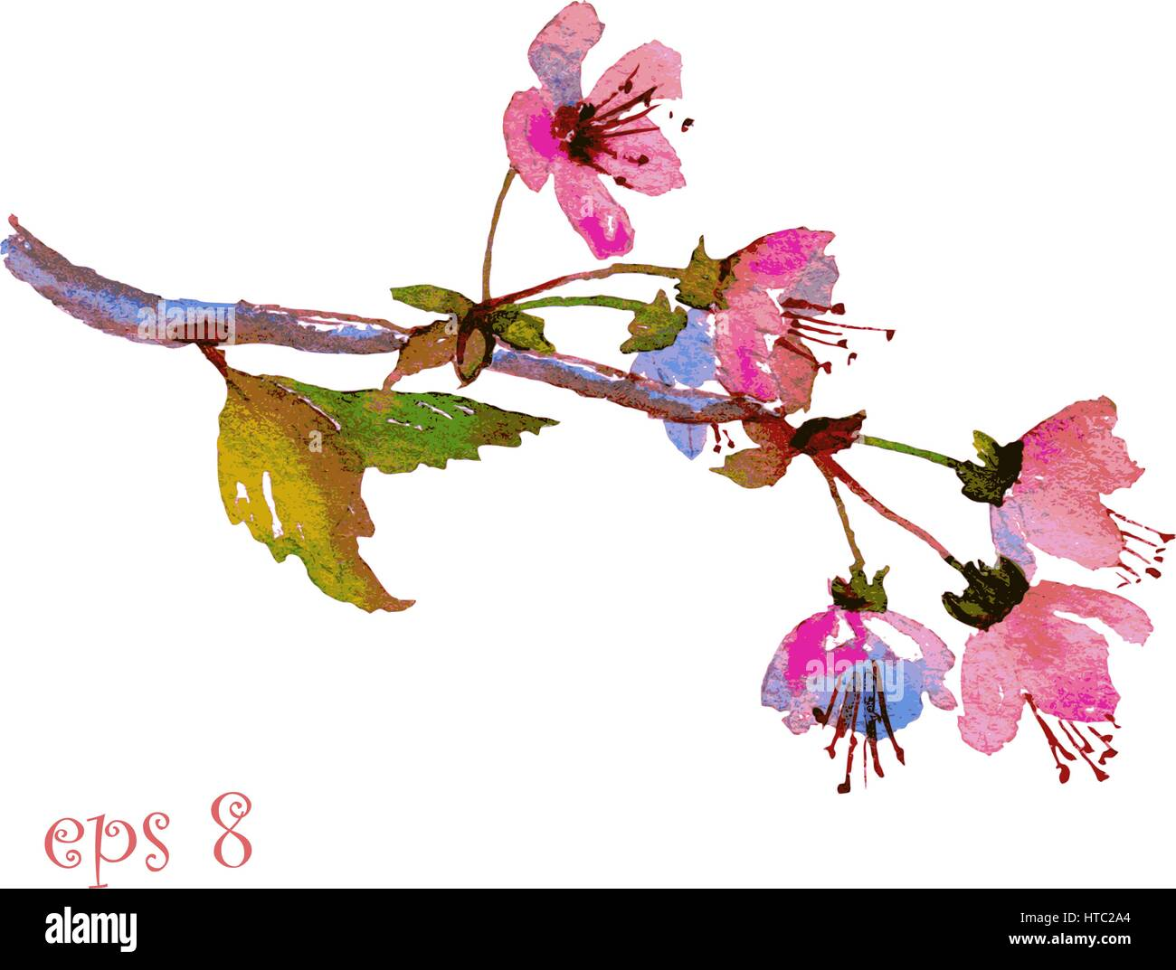 Cherry Blossom Sakura Branch With Pink Flowers Hand Painted Stock Vector Image Art Alamy