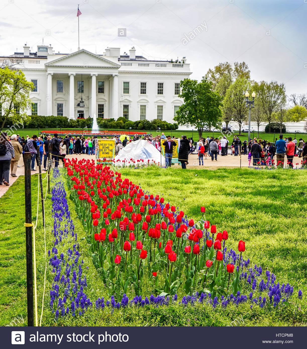 White house peace vigil stock photos white house peace vigil stock washington dc white house flowers usa tent stock image mightylinksfo