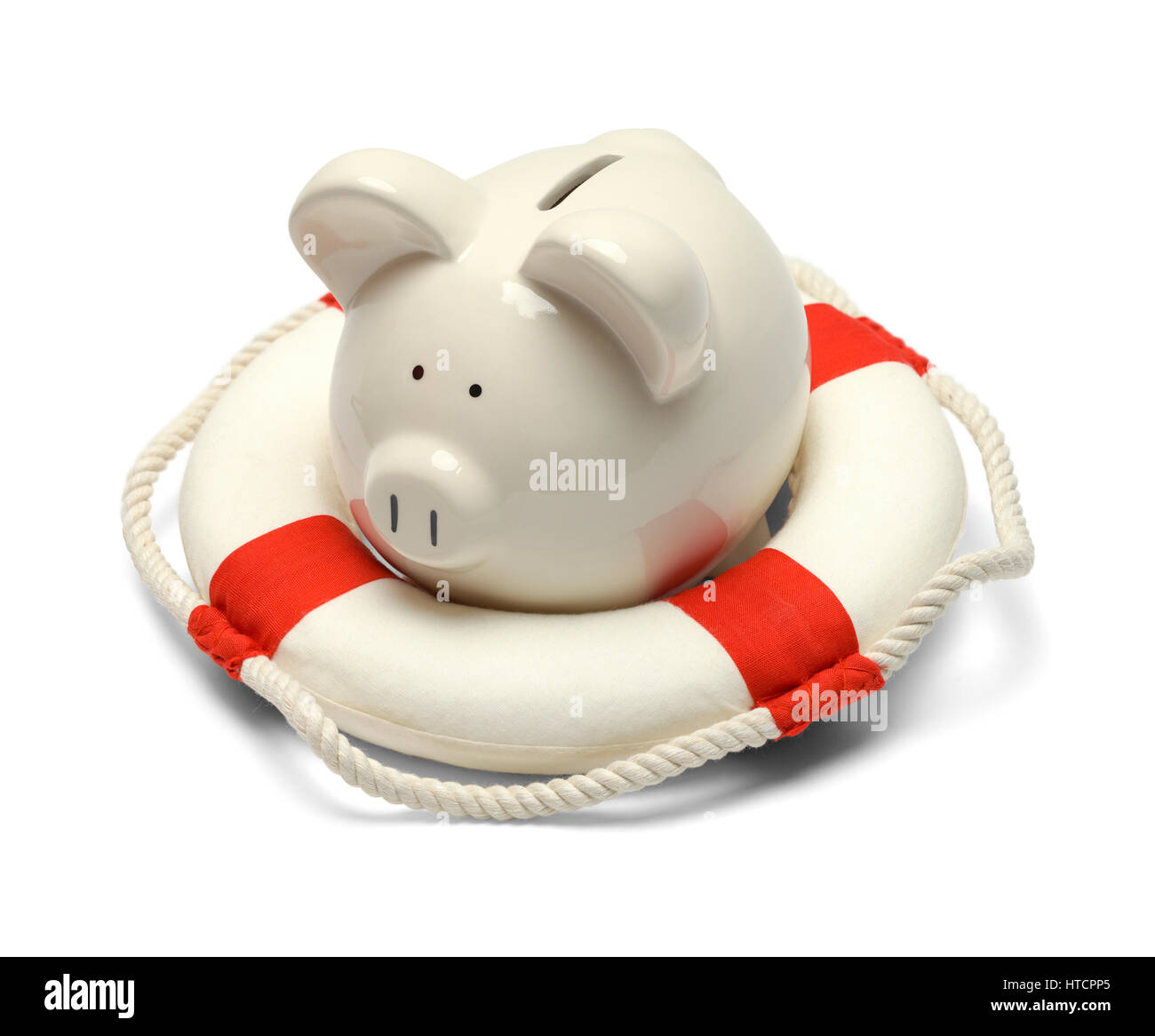 Pig in a Life Preserver Isolated on White Background. - Stock Image