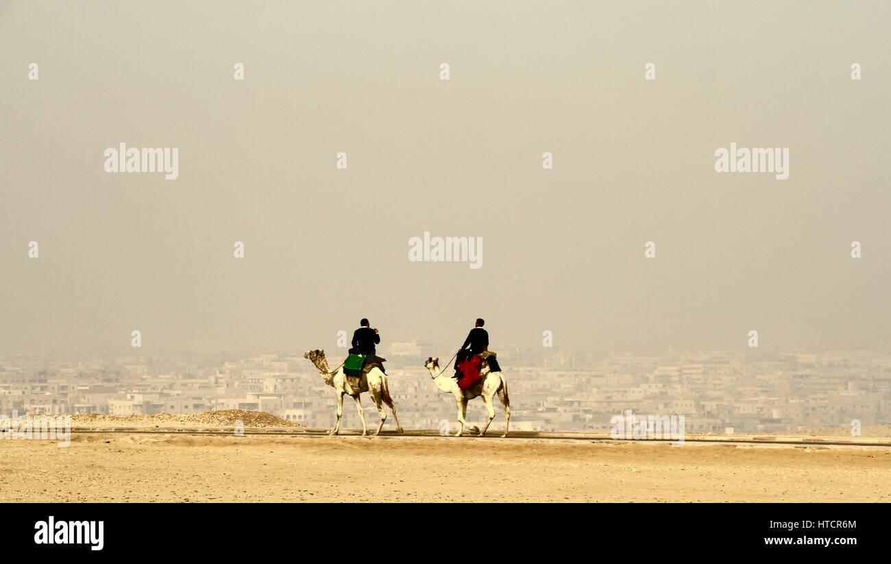 Egypt, Pyramids, Giza, Camel's, Foggy Cairo - Stock Image