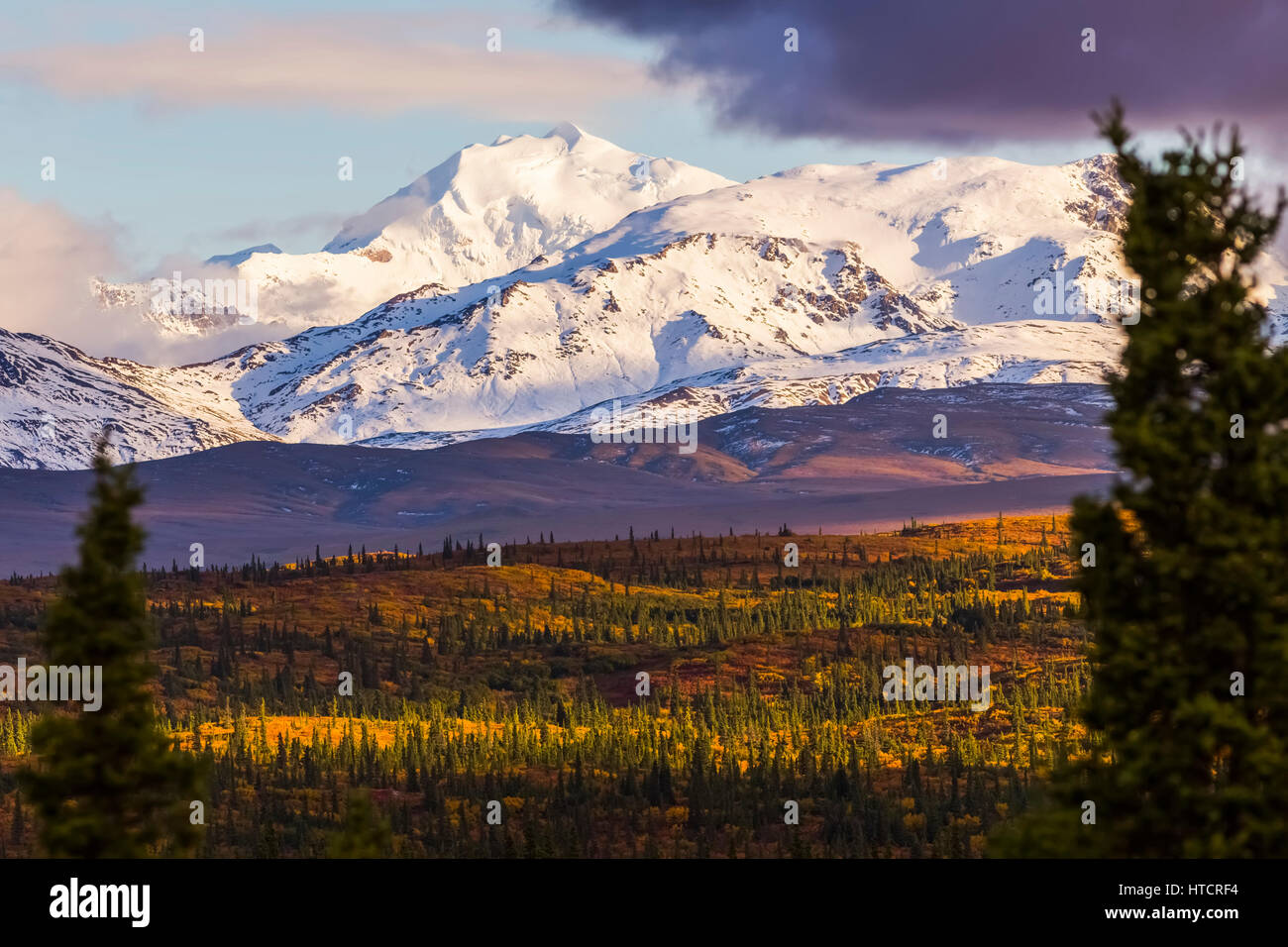 Mt. Silvertip shines in the evening sun in autumn, viewed from the Richardson Highway south of Delta Junction; Alaska, - Stock Image
