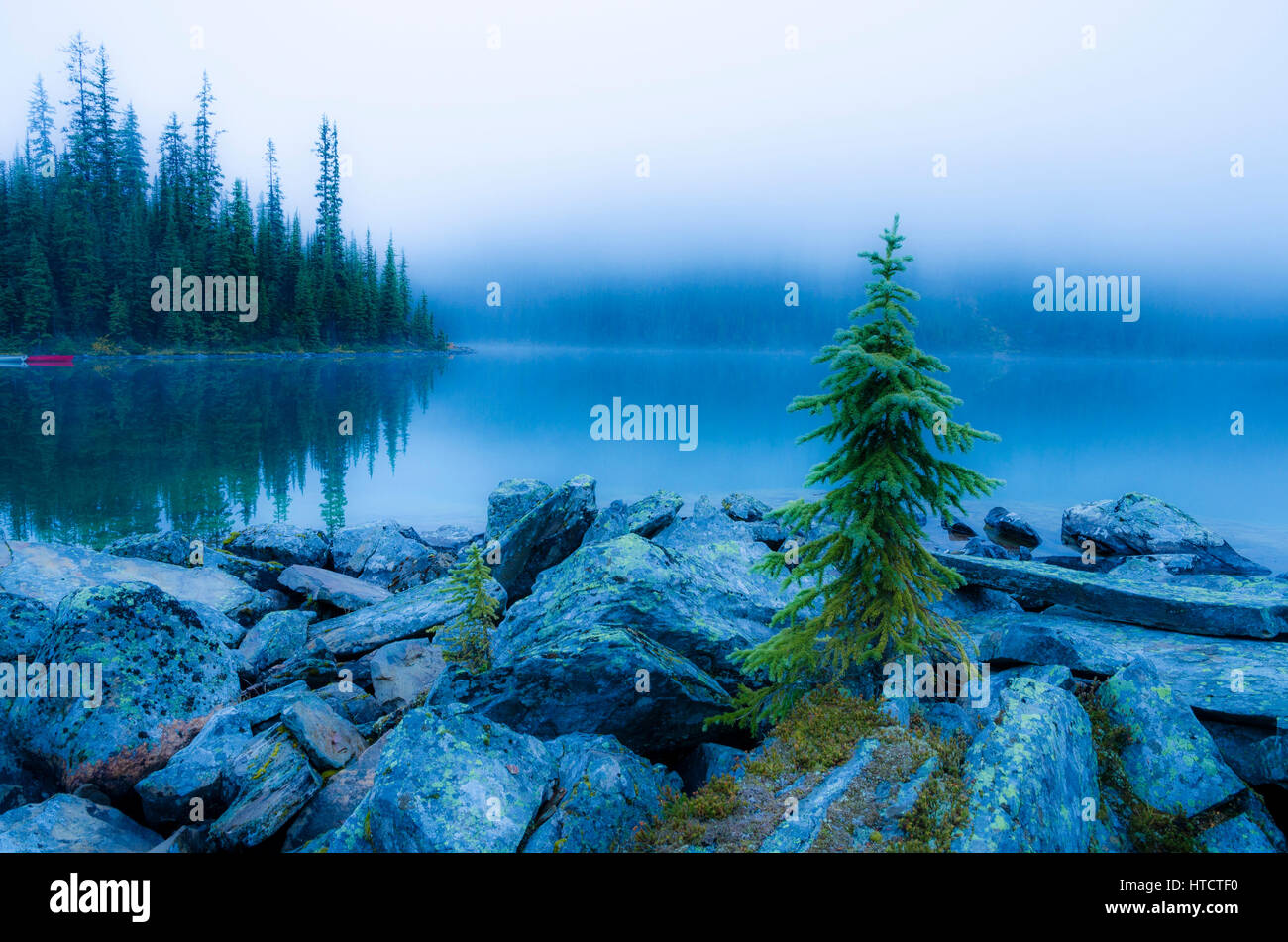 Fog obscures the mountains, Lake O'Hara, Yoho National Park, British Columbia, Canada Stock Photo