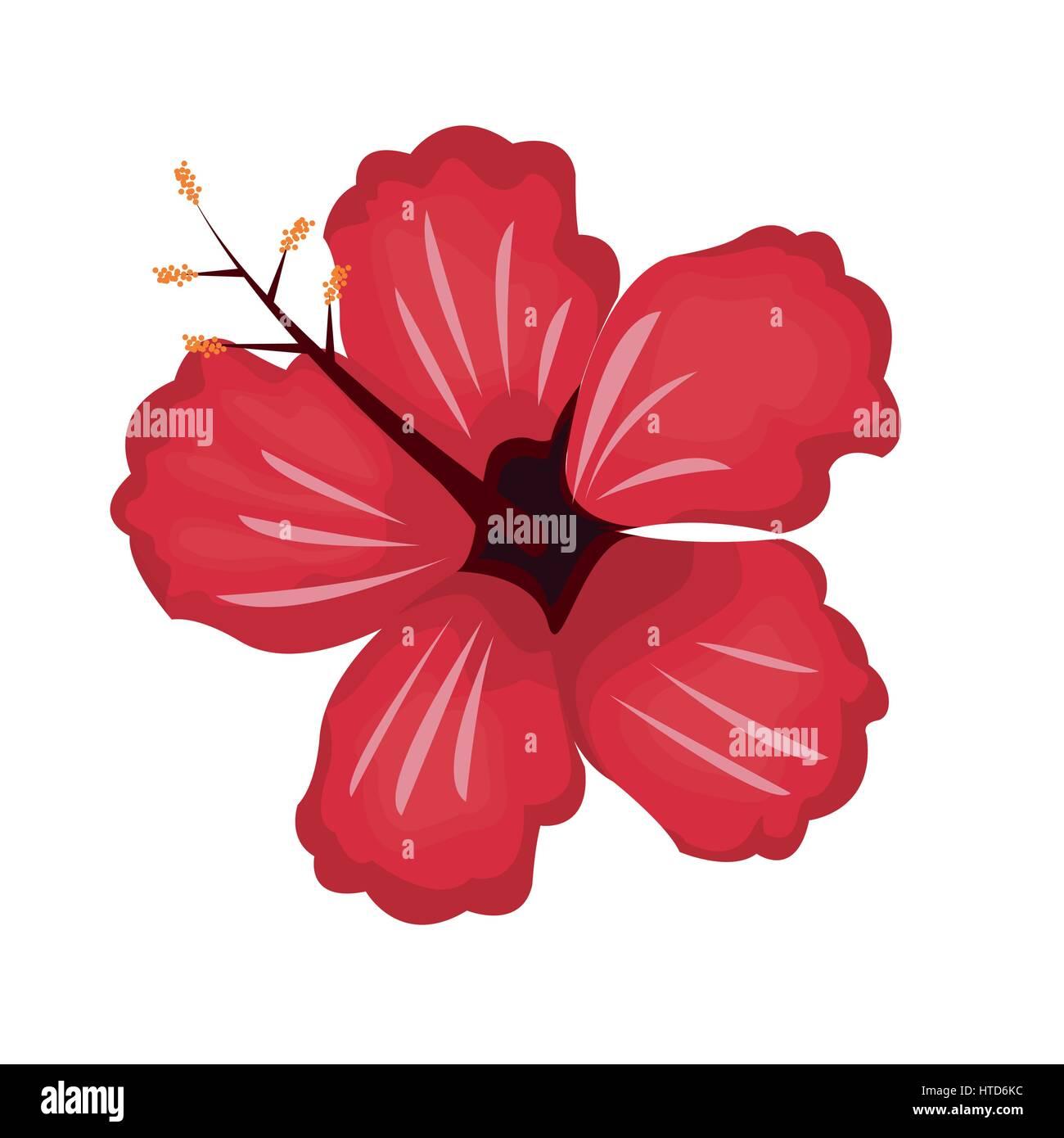 Hibiscus flower vector stock photos hibiscus flower vector stock hibiscus flower exotic nature stock image izmirmasajfo