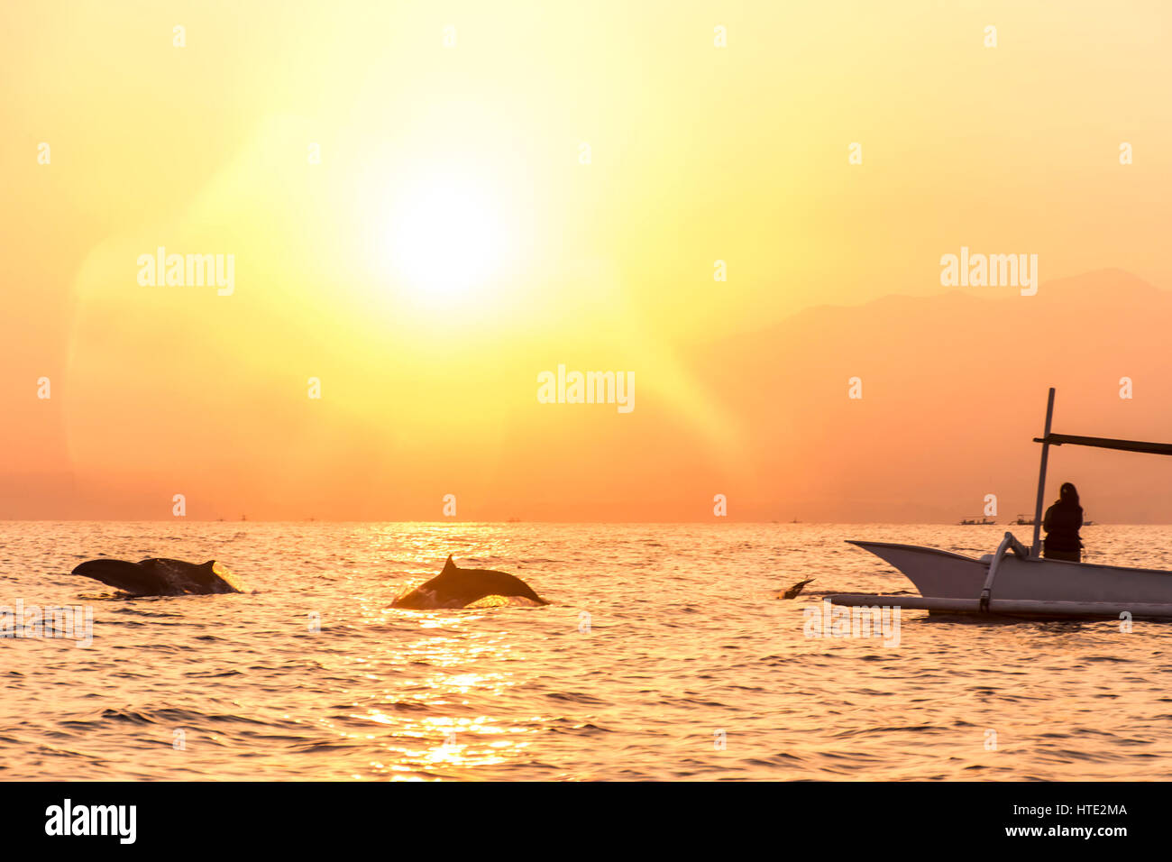 Bali Indonesia free wildlife Dolphin boat Watching at Lovina Beach - Stock Image