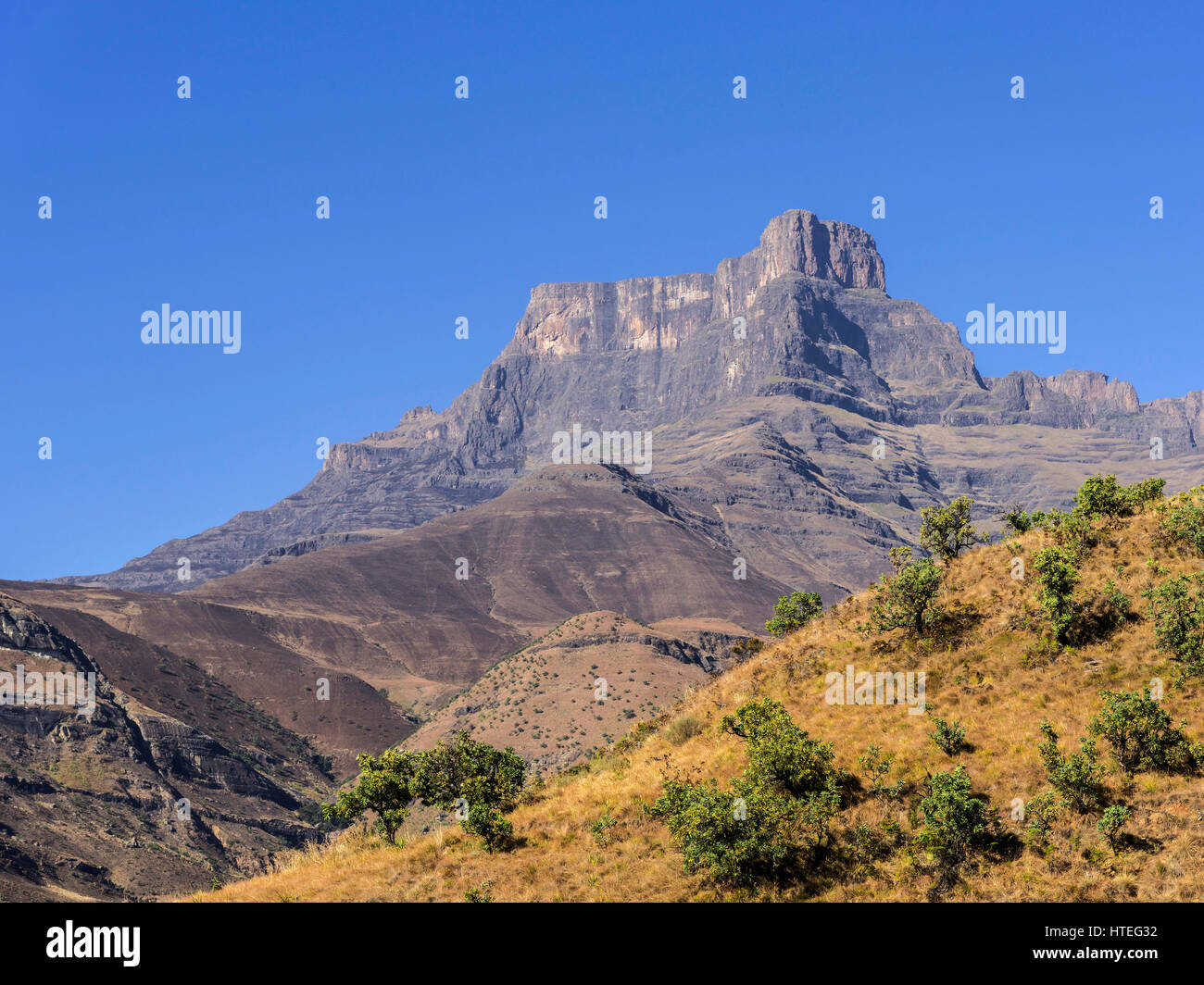Amphitheatre with Mount Eastern Buttres, Royal Natal National Park, KwaZulu-Natal, South Africa - Stock Image