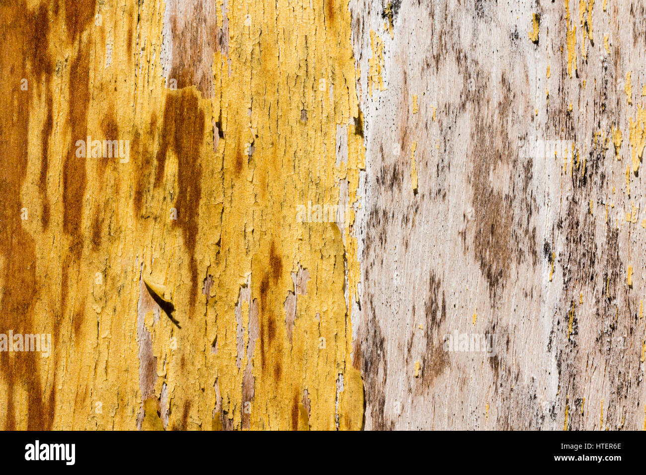 Decrepit yellow old wood background - Stock Image