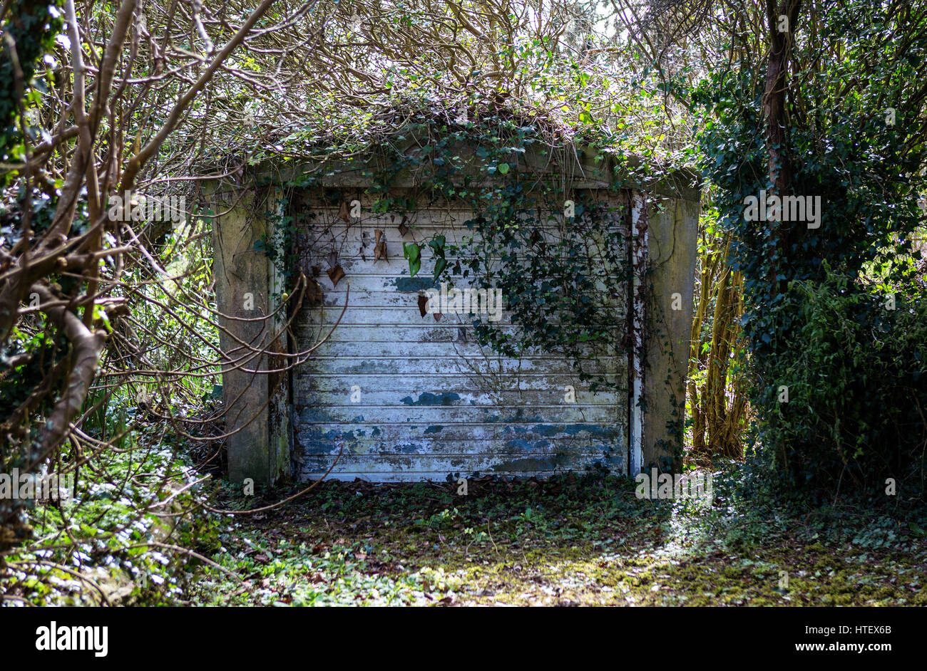 Forgotten Garage with trees, ivy, and undergrowth Stock Photo