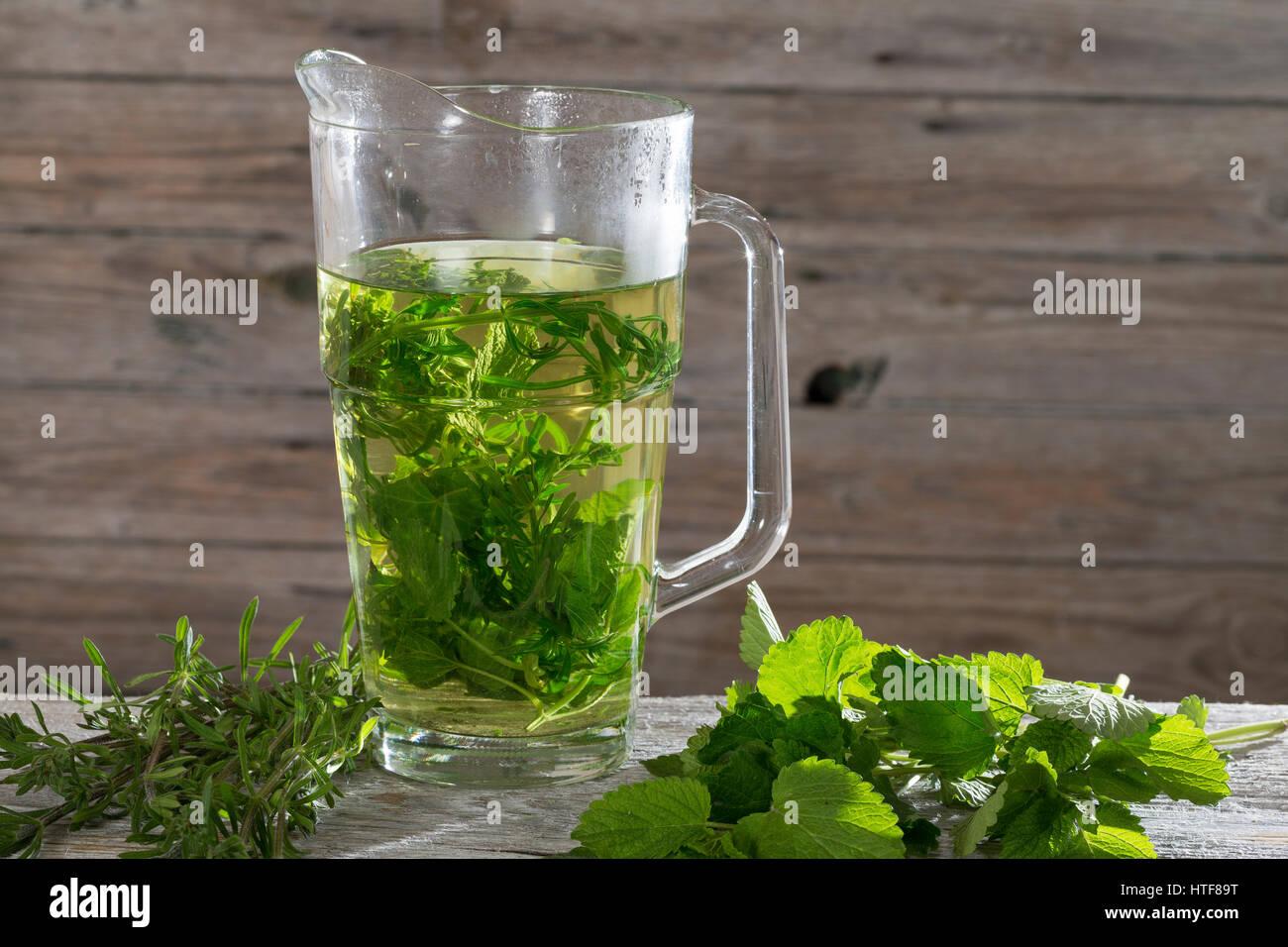 Kräutertee, Tee aus Zitronenmelisse, Zitronen-Melisse, Melisse und Kletten-Labkraut, Klettkraut, Klettenlabkraut, - Stock Image