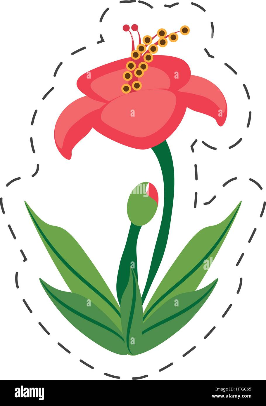 Cartoon Hibiscus Flower Image Stock Vector Art Illustration