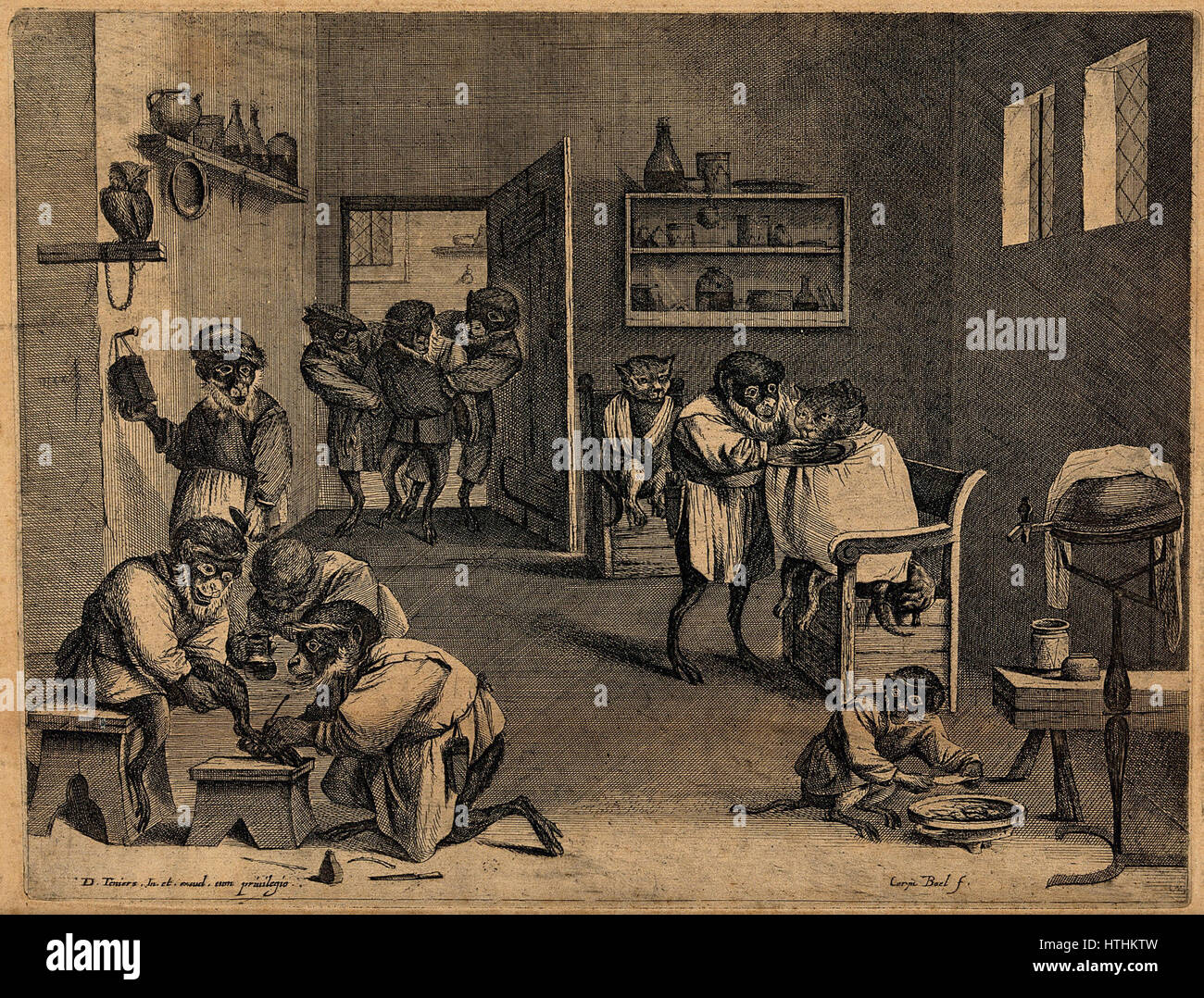 Monkeys dressed as apothecaries caring for sick animals in a Wellcome V0021454 - Stock Image