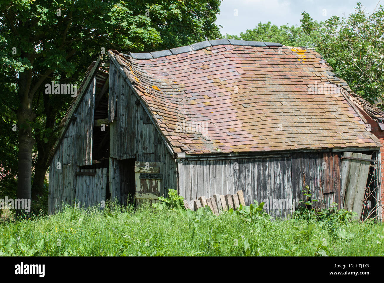 Old rustic barn in a state of decay. England, UK. - Stock Image