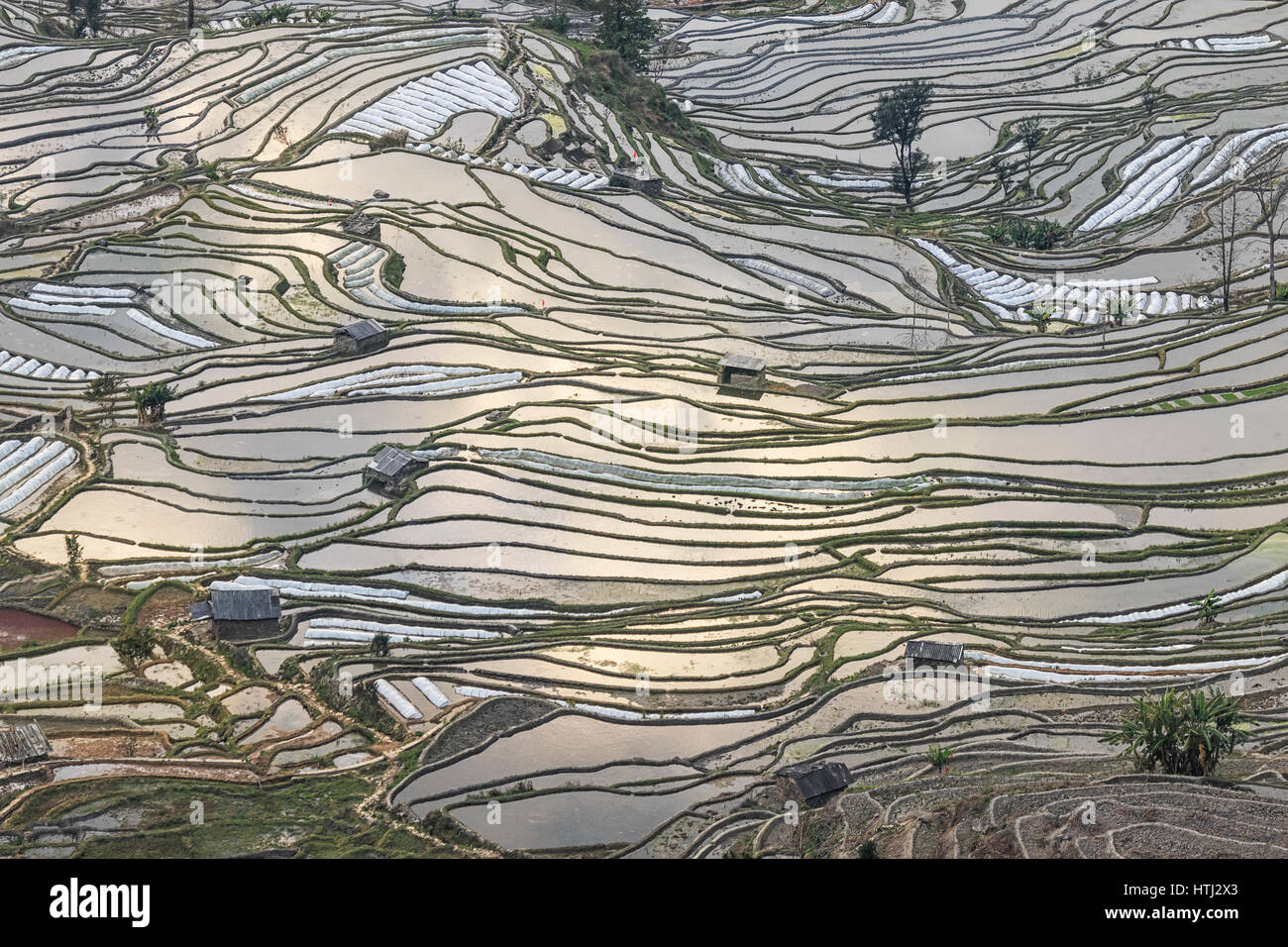 Sunset over yuanyang rice terraces in yunnan china one of the sunset over yuanyang rice terraces in yunnan china one of the latest unesco world heritage sites gumiabroncs Image collections