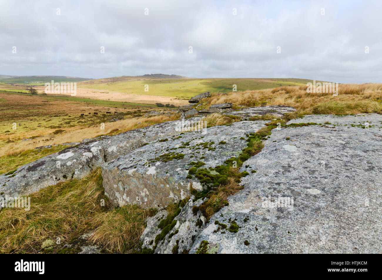 Bodmin Moor on a windy afternoon in March - Stock Image