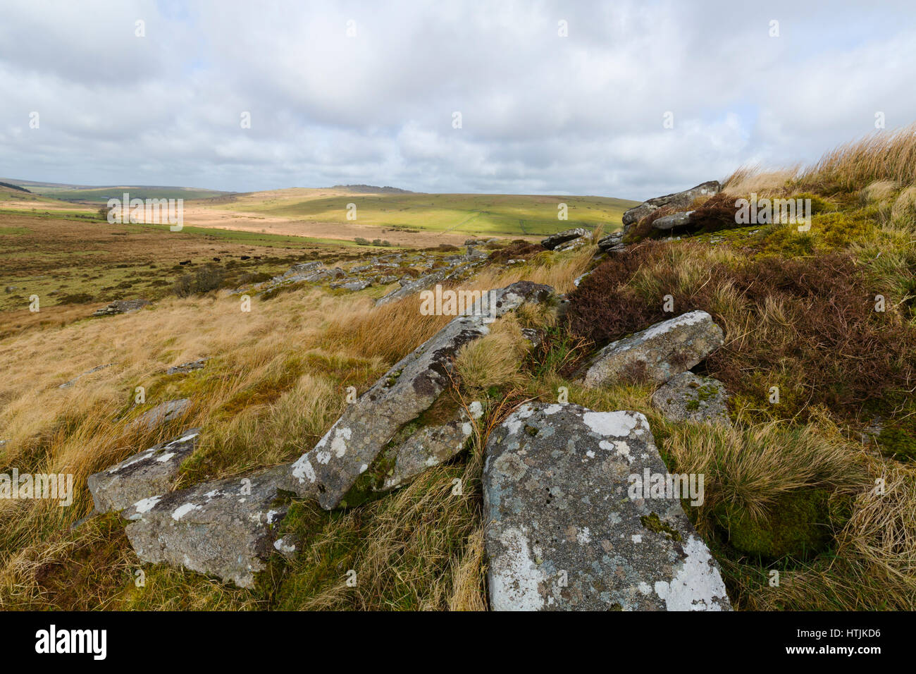 Bodmin Moor North of the village of Minions in the warm afternoon sunshine - Stock Image