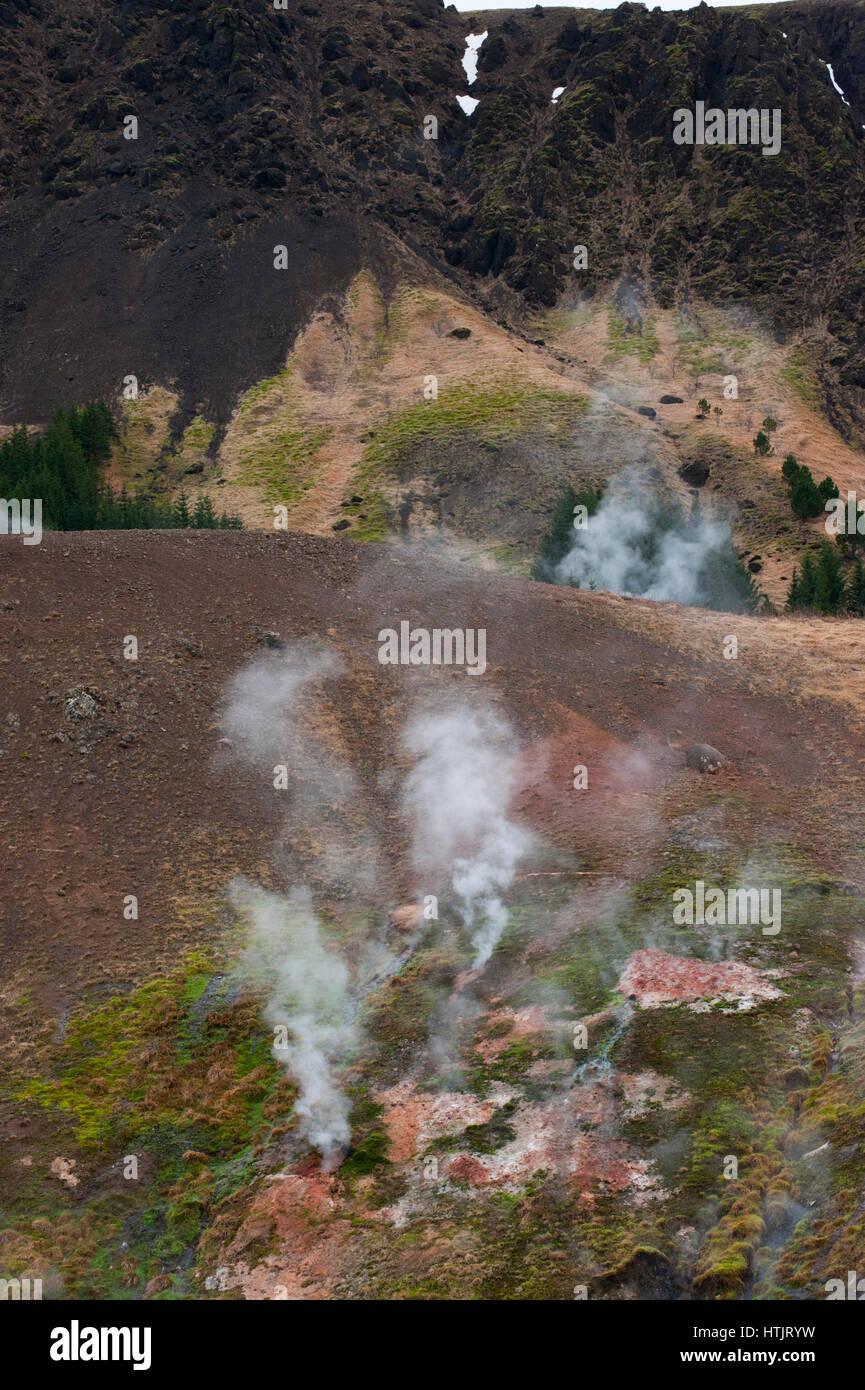 Geothermal hot springs or fumaroles,Hveragerdi, Iceland - Stock Image