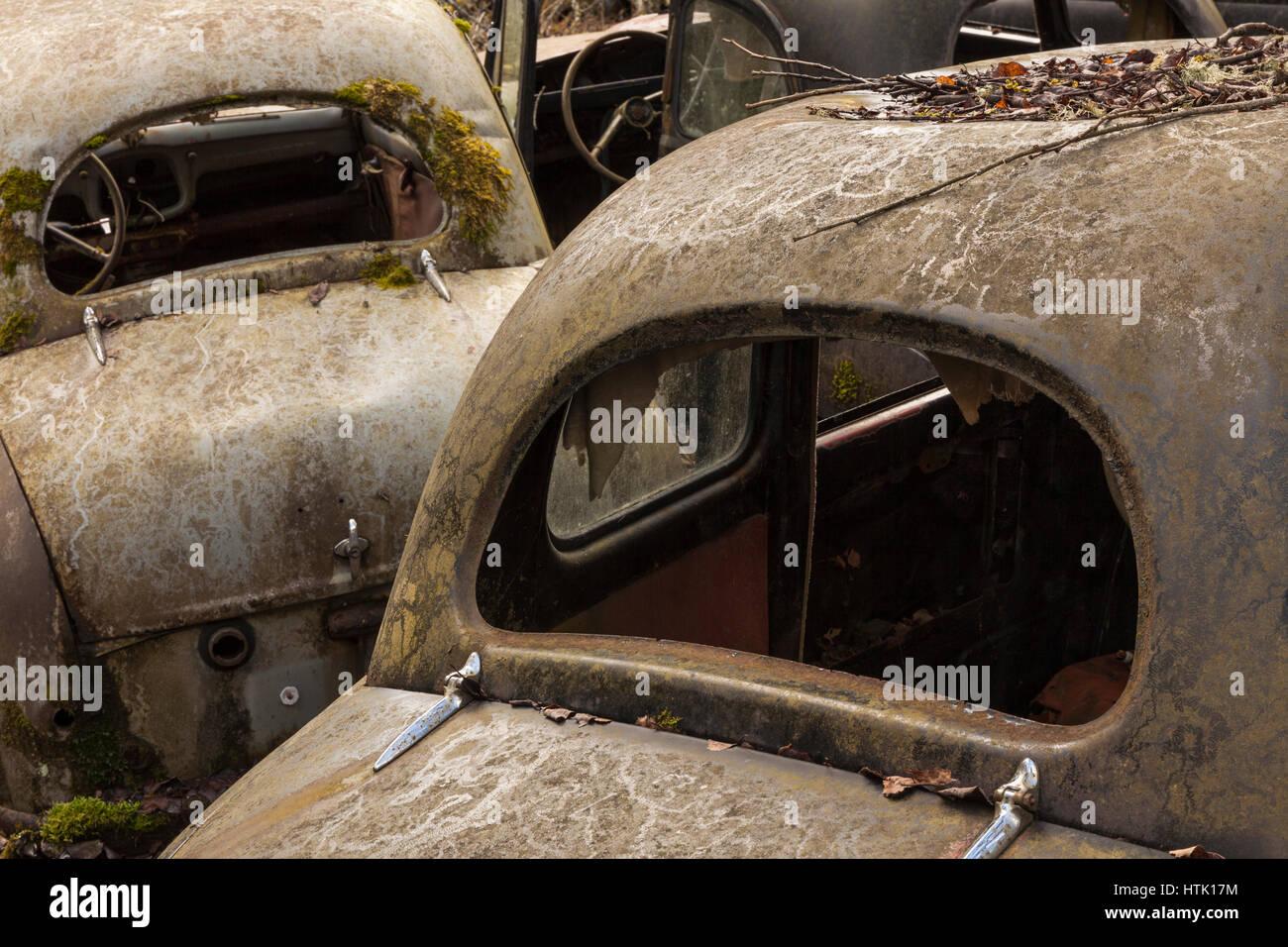 Rusty old vintage cars, scrap yard, Bastnäs, Värmland, Sweden - Stock Image