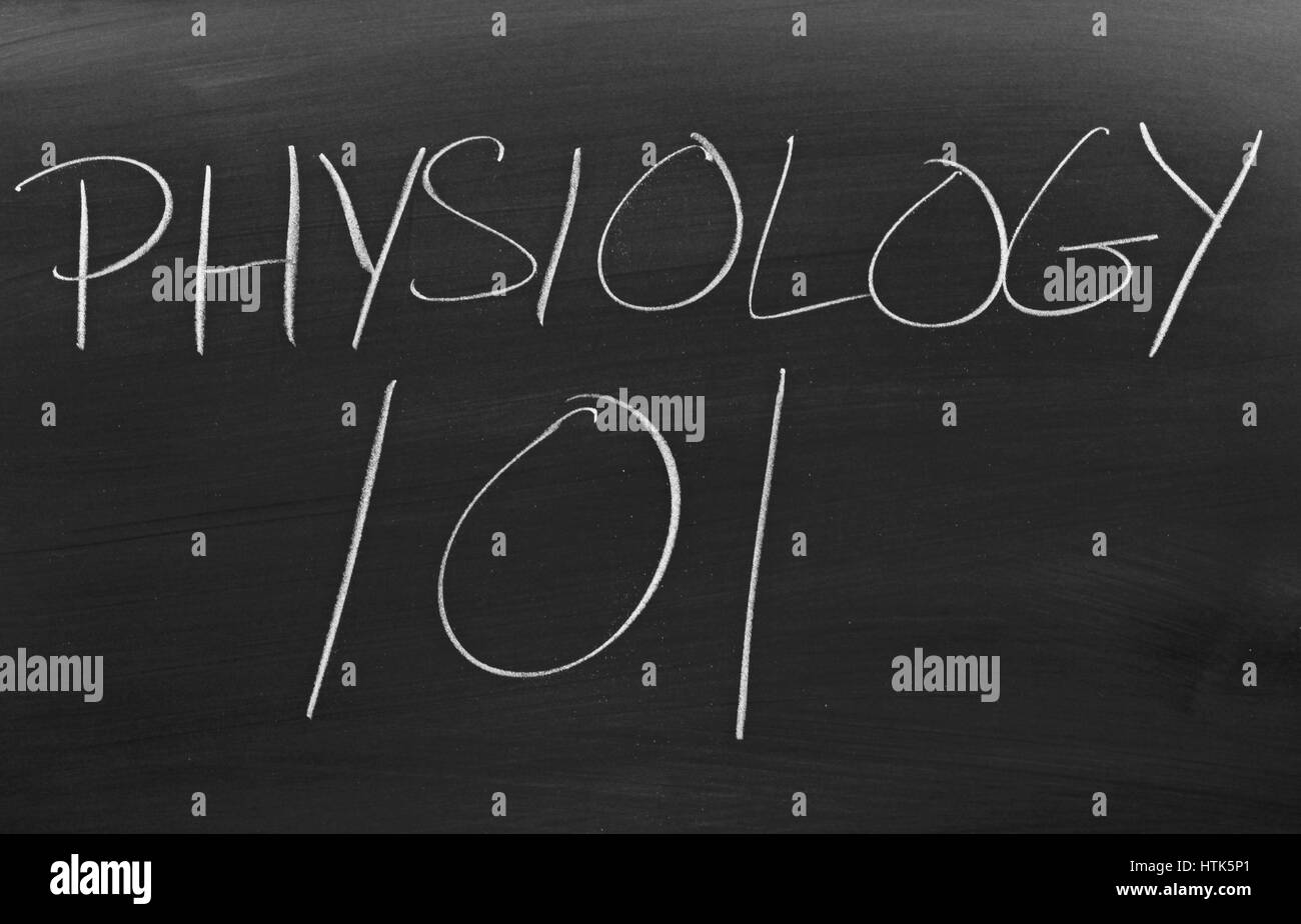 The words 'Physiology 101' on a blackboard in chalk - Stock Image