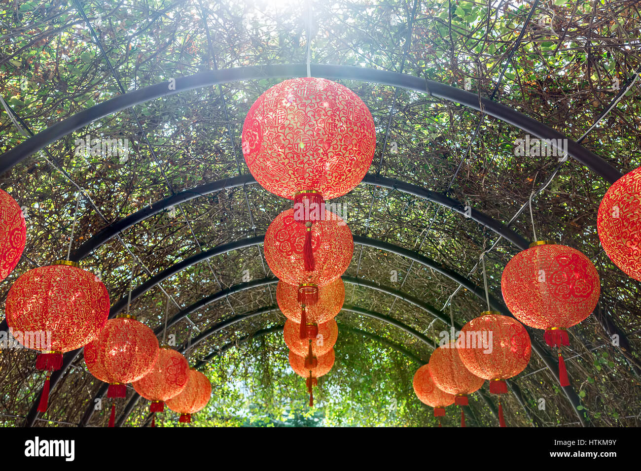 Many Hanging Asian Red Lanterns On The Arch Trellis With Green