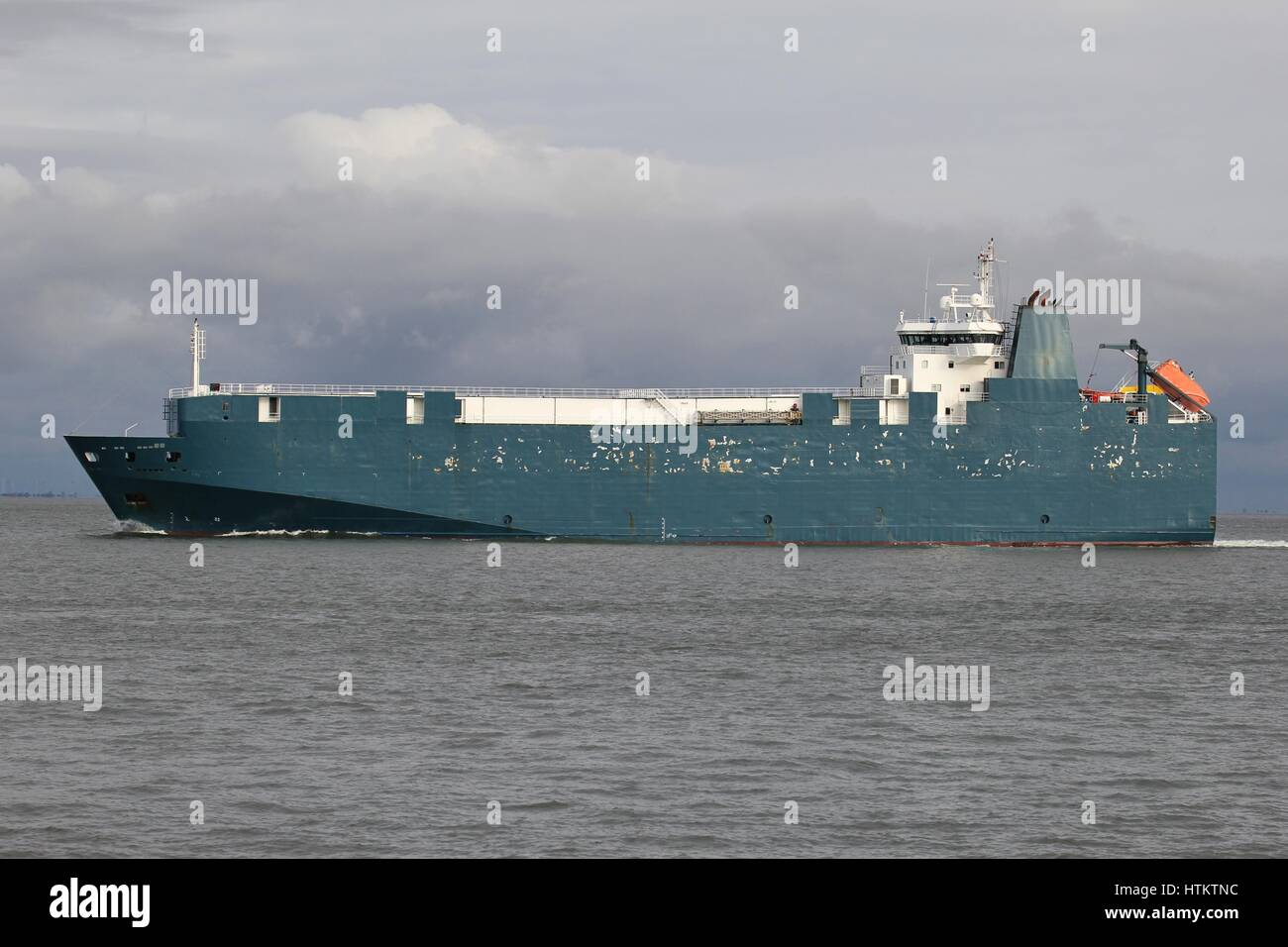 pure car and truck carrier at sea - Stock Image