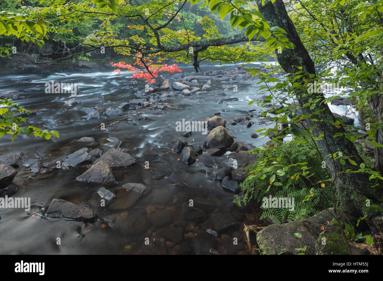 Autumn colours along the Oxtongue River, Oxtongue Rapids Park, Ontario, Canada Stock Photo