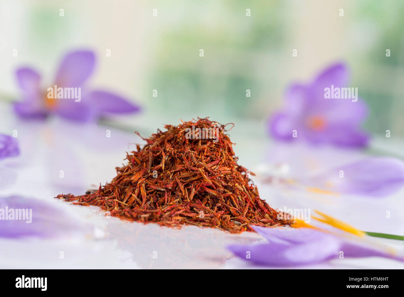 Flower crocus and dried saffron spice on white background. - Stock Image
