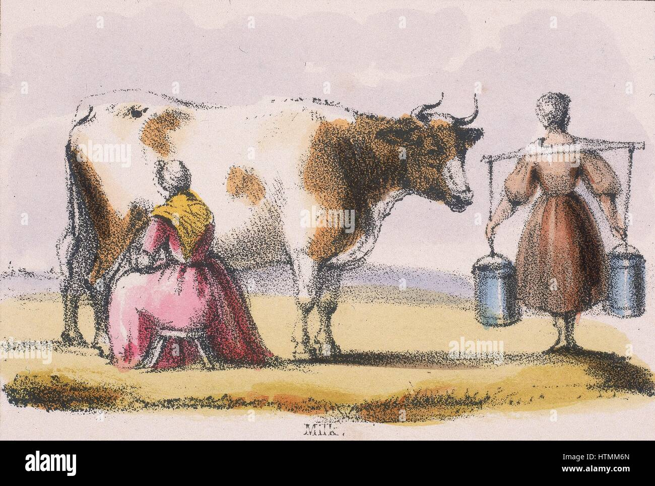 mlikmaids from graphic illustrations of animals and their utility to man c1850
