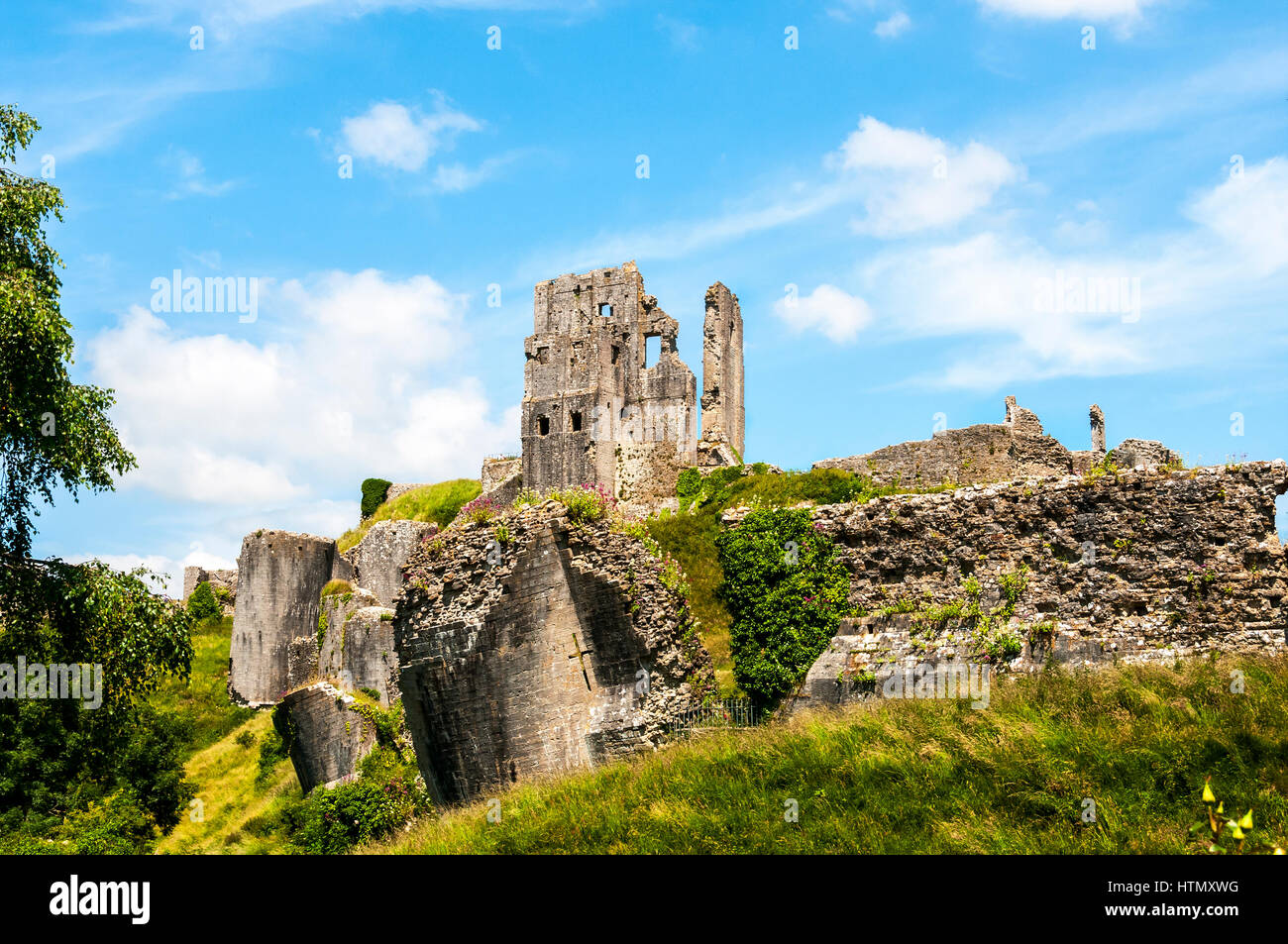 The Keep of the romantic ruins of 1000 year old Corfe Castle standing above fallen towers and walls, amid a profusion - Stock Image