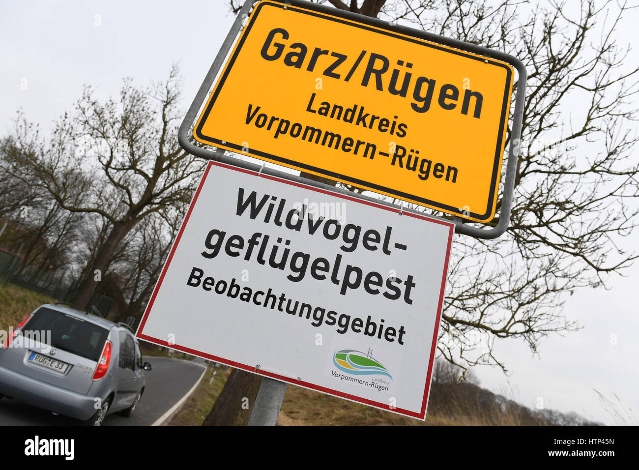 """Garz, Ruegen Island, Germany. 13th Mar, 2017. A sign reading """"Wildgefluegelpest: Beobachtungsgebiet"""" (Wild bird flu: observation area) has been mounted to the town boundary sign in Garz, Ruegen Island, Germany, 13 March 2017. Dogs and cats are not allowed to roam free. They themselves do not normally fall sick, but can spread the virus. Photo: Stefan Sauer/dpa-Zentralbild/dpa/Alamy Live News Stock Photo"""