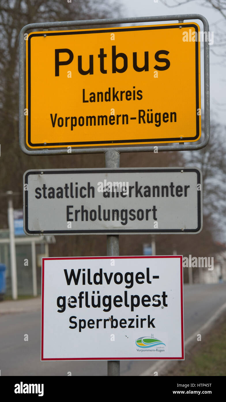 """Putbus, Ruegen Island, Germany. 13th Mar, 2017. A sign reading """"""""Wildgefluegelpest Sperrbezirk"""" (Wild bird flu: closed area) has been mounted to the town boundary sign in Putbus, Ruegen Island, Germany, 13 March 2017. Dogs and cats are not allowed to roam free. They themselves do not normally fall sick, but can spread the virus. Photo: Stefan Sauer/dpa-Zentralbild/dpa/Alamy Live News Stock Photo"""