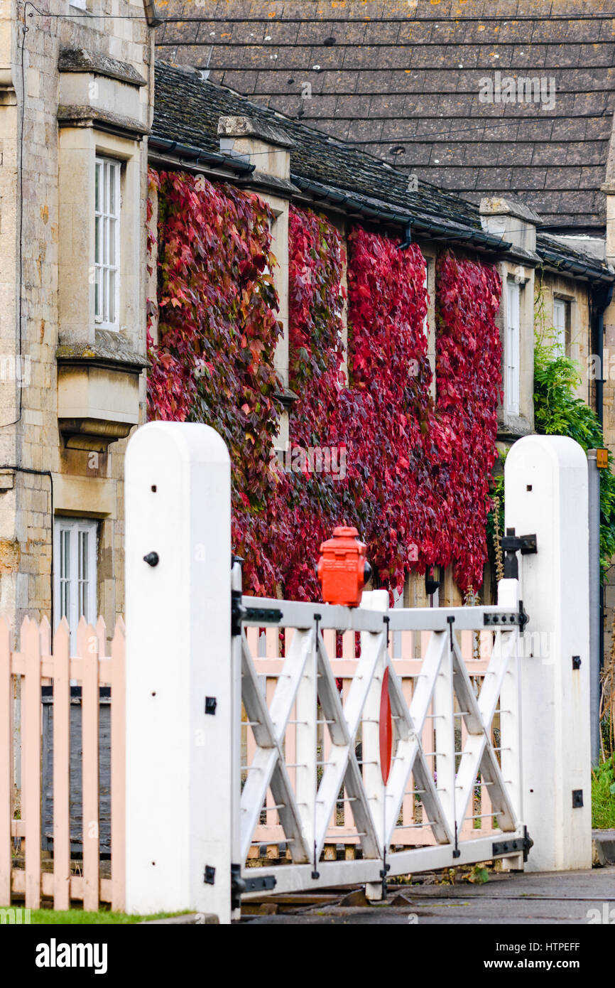 Autumn coloured leaves on the front of a stone built cottage next to a railway level crossing.Stock Photo