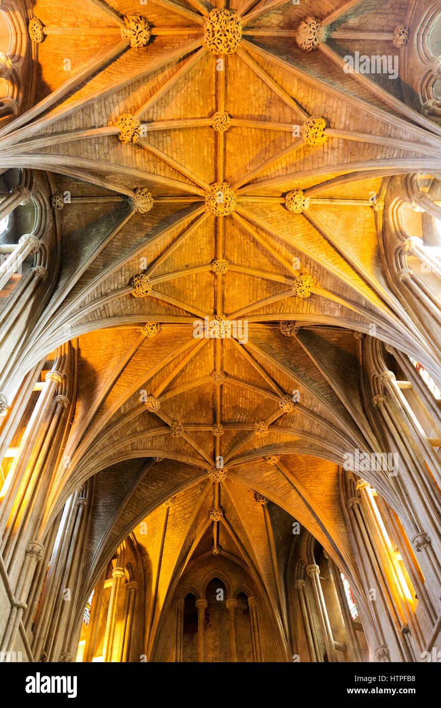 Pershore Abbey Roof showing the ' Ploughshare Vaulting ' in the ceiling, Pershore, Worcestershire, England - Stock Image