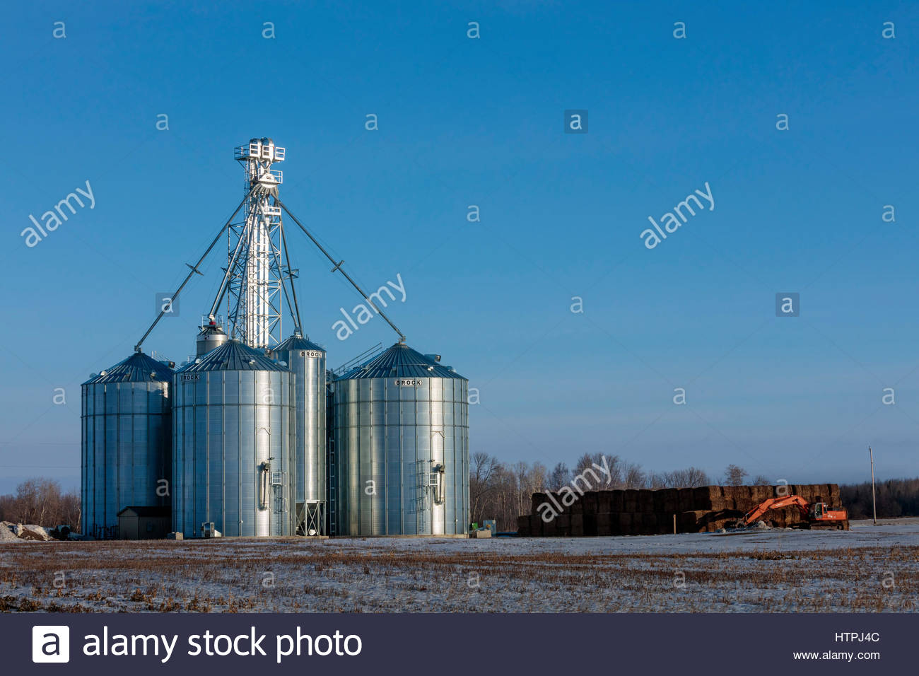 Near Port Perry Ontario Canada steel grain silos for storing bulk agriculture materials such as grain. - Stock Image