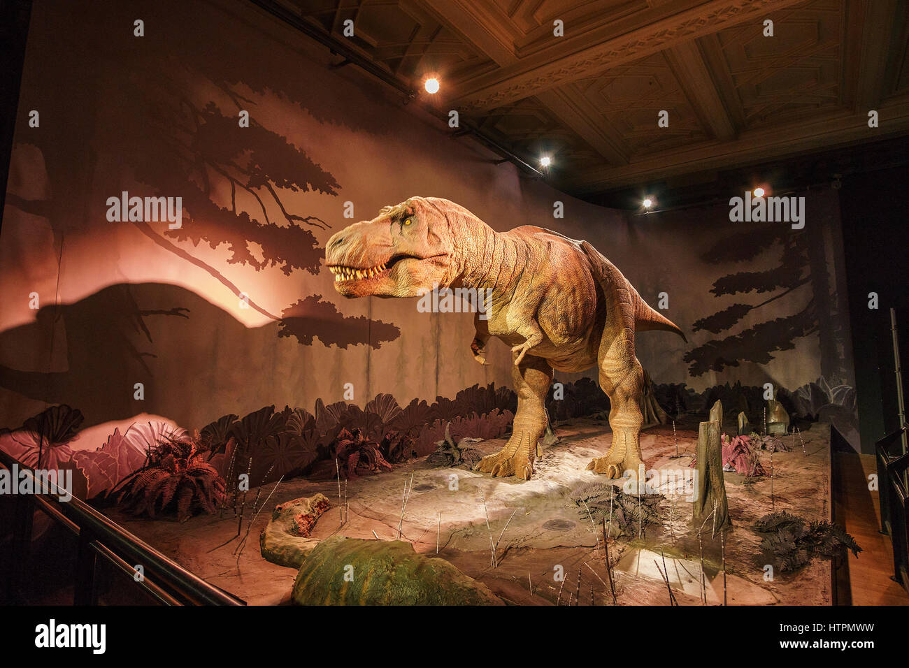 Moving tyrannosaurus rex. Interior of the Natural History Museum. Established in 1881, the museum houses 80million - Stock Image
