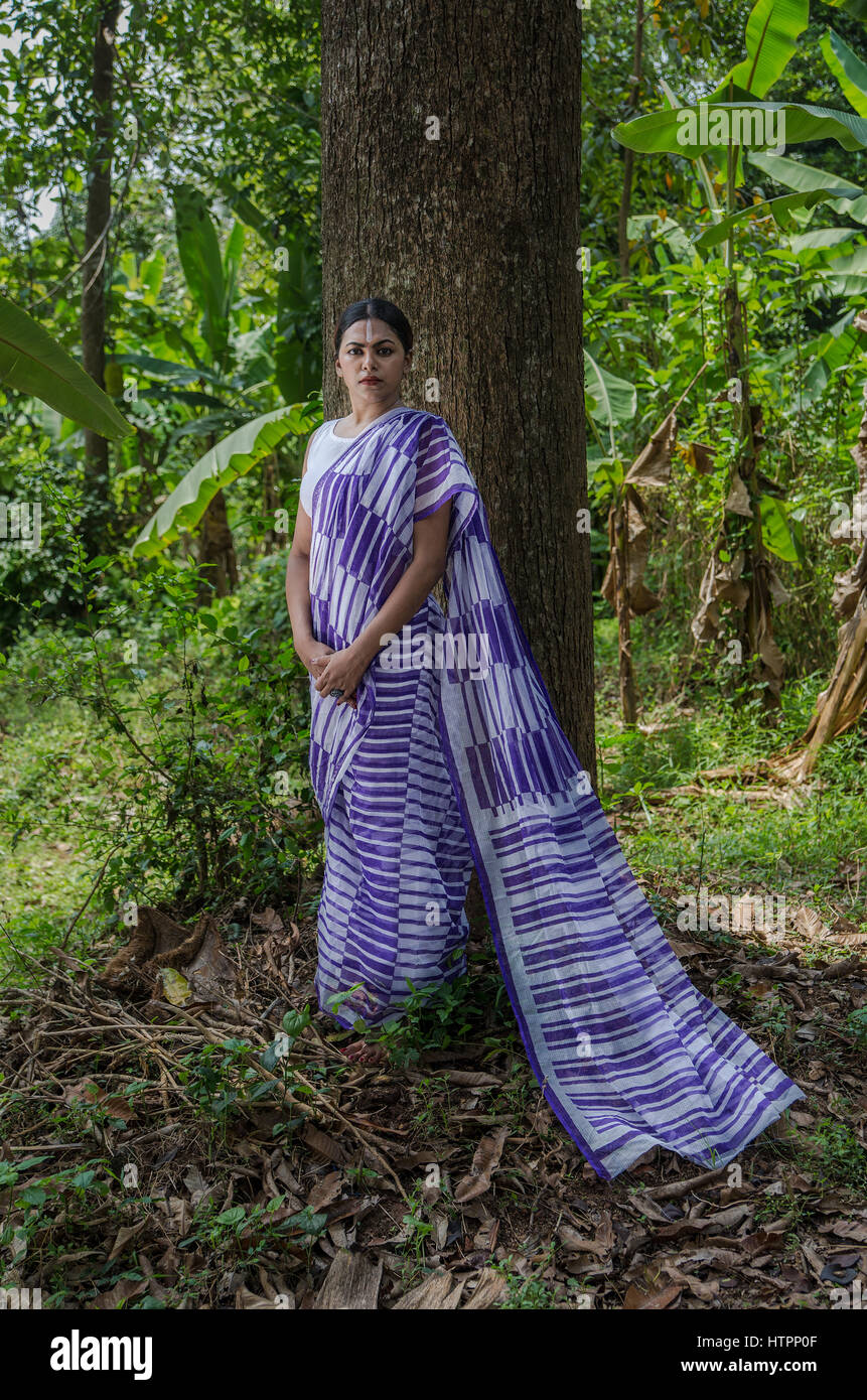 Indian cotton sarees collection - Stock Image