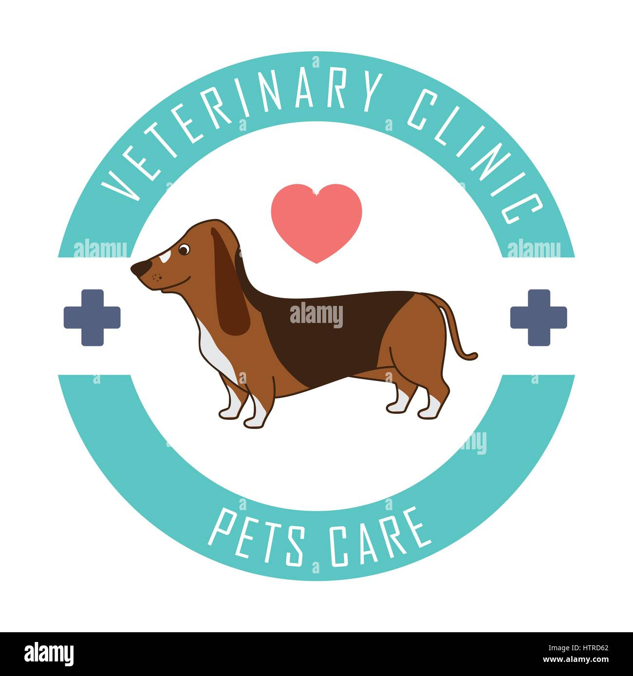 Veterinary clinic healthcare - Stock Image