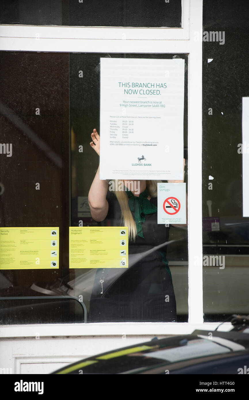Lloyds bank closing its branch in  a small welsh town :  March 09 2017 - A woman employee puts up information in - Stock Image