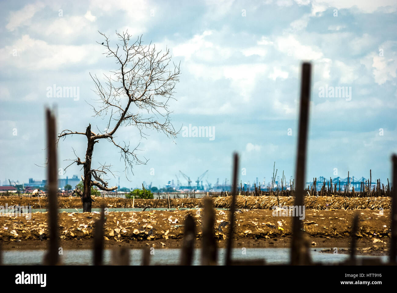 A view of a reclaimed land in North Jakarta, Indonesia. © Reynold Sumayku - Stock Image
